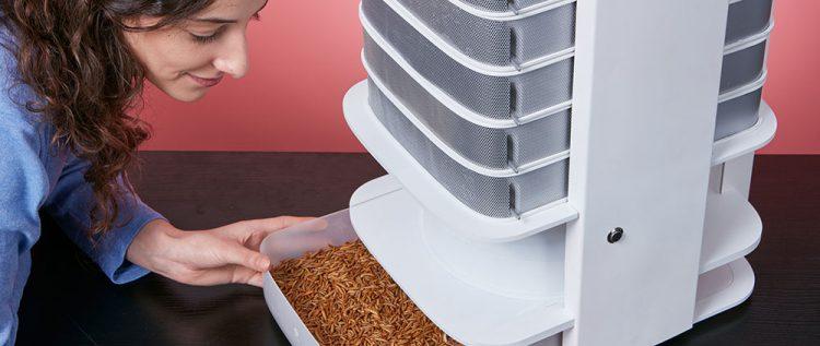 Livin Farms Hive: zelf meelwormen kweken