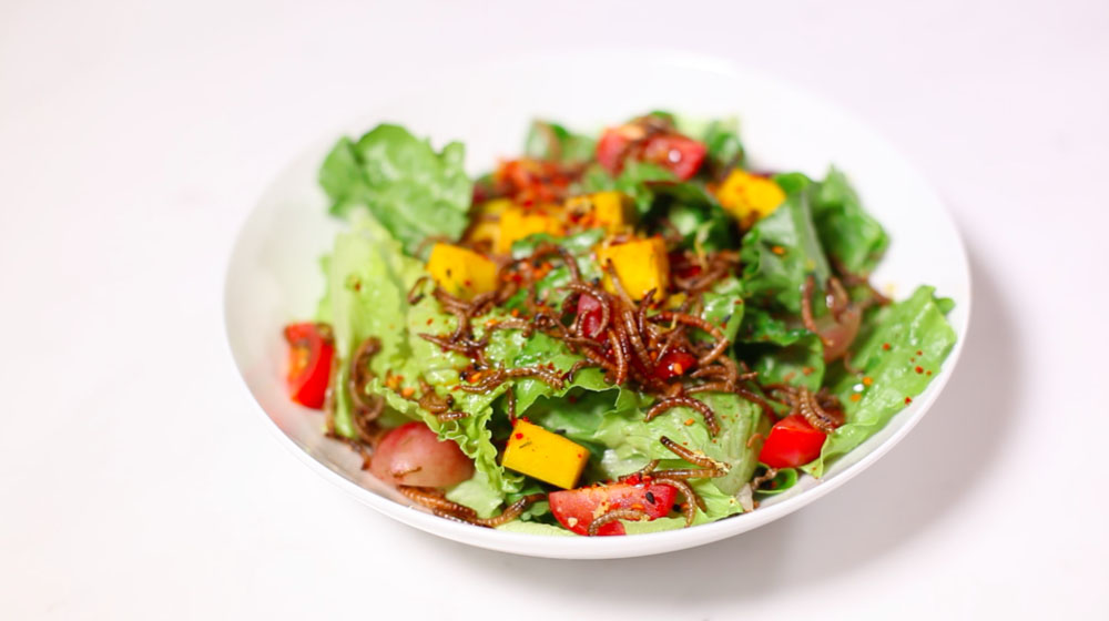 Livin Farms Hive: salade met meelworm